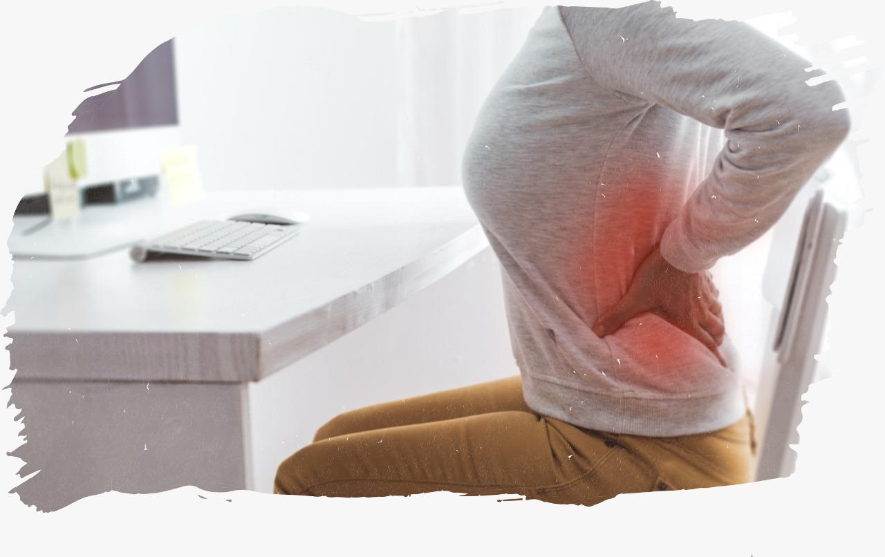 Surgical Rehabilitation & lower back